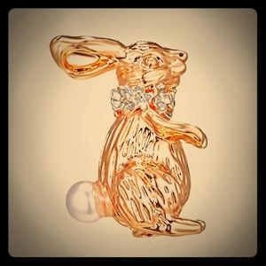 ☀️$7 each -or- 2 for $10⭐️ Rabbit pendant/brooch